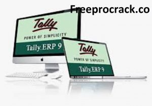 Tally ERP 9 Crack Patch 6.6.2 Free Download Version Latest